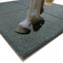 Dalles de sol pour boxes chevaux